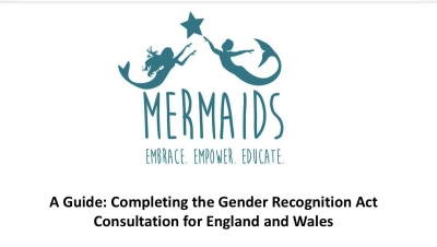 Mermaids - Guide to completing the GRA Consultation
